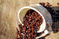 Kaffeetasse mit Bohnen Fliesenbild