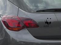 Panda Bär WTF!? Autoaufkleber