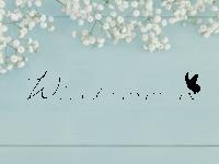 Wandtattoo Willkommen Schmetterling
