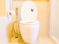 WC Deckel Aufkleber Thronsaal
